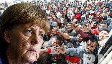ВГермании зарегистрировали рекордное количество иностранцев— более 10млн человек