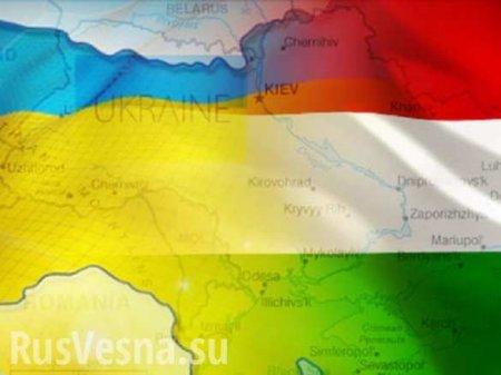 Борьба с языками нацменьшинств и международные скандалы: Министр образования Украины бегает от коллег из Европы