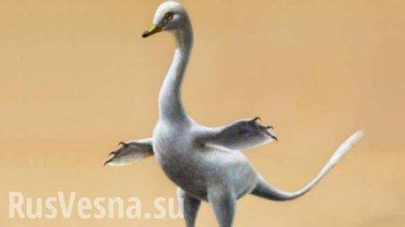 Ученые обнаружили в Монголии останки «уткодинозавра»