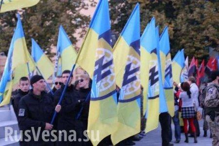 Хватит хвалить Гитлера: Франция обвинила Украину в нацизме