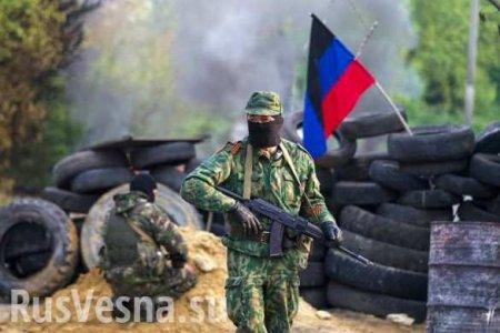 Полк Армии ДНР «Дунай»: от жестоких боёв в Авдеевке до ордена за оборону Донецка (ВИДЕО)