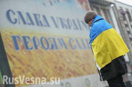 Патология системы: «Достоинство» стоящих на четвереньках украинских активистов