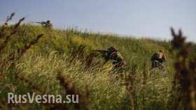 Утренняя сводка с фронтов ЛНР и ДНР: идут бои около Луганска, Северодонецка и Лисичанска