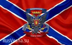 УкроСМИ лгут: шансы карателей разгромить армию Новороссии равны нулю (видео)
