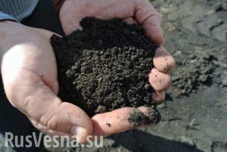 «Закончится земля — начнут продавать людей» — эксперт о перспективах Украины (ВИДЕО)