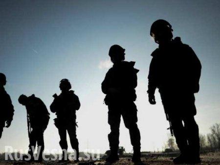 В Чечне ликвидированы трое боевиков, есть жертвы среди силовиков