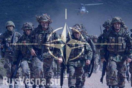 НАТО следует заняться борьбой с терроризмом, а не «российской угрозой», — МИД