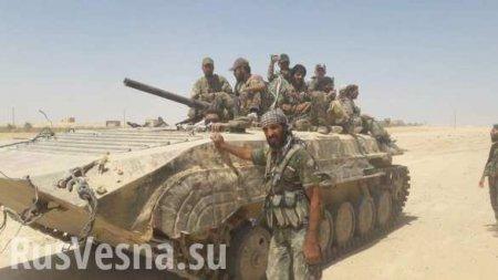 Ночной рейд: Сирийский отряд уничтожил караван «ан-Нусры» на границе Хамы и Идлиба
