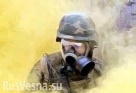 Россия в ООН наложила вето на японскую резолюцию о расследовании химических атак в Сирии