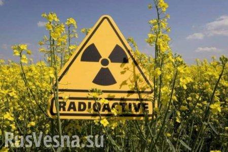 От радиоактивного рутения вреда меньше, чем от курильщиков, — СМИ Германии