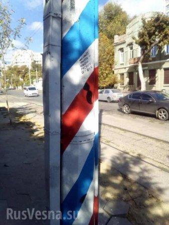 «Мир спасёт красота русского оружия»: вОдессе появились российские флаги (ФОТО)