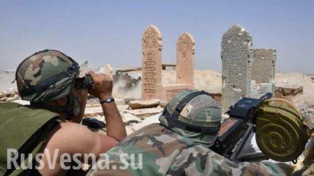 Сотни могил убазы СШАвСирии: Минобороны РФсообщило обужасах «лагеря смерти» (ФОТО)