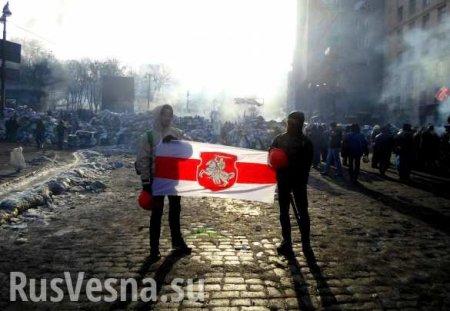 Белорусские националисты хотят разорвать страну при поддержке Украины (ВИДЕО)