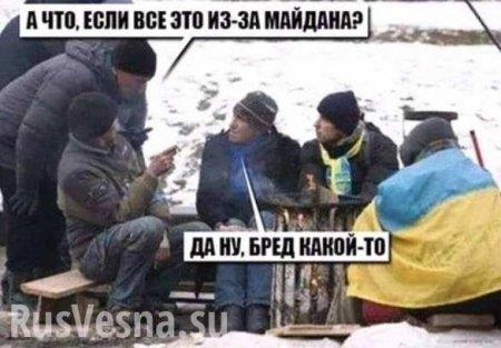 Новое средневековье — украинцы отказываются отгаза ипереходят надрова (В ...