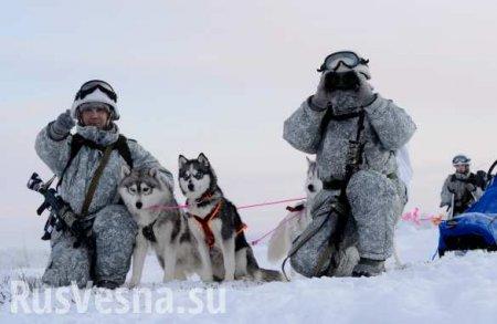 «Американцы опоздали»: в Москве рассказали об ответах на агрессию США в Арктике