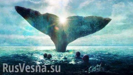 Человек, которого проглотил кит, сумел выжить (ВИДЕО)
