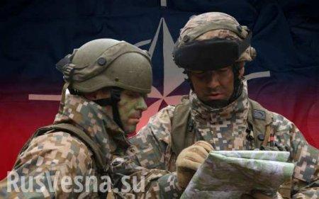 Это более чем серьёзно: НАТО через Эстонию озвучило план атаки на Россию