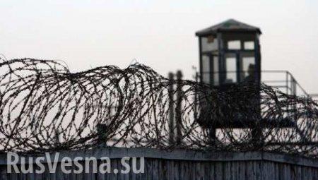 Украинскому «активисту», покалечившему оппонента из-за флага, грозит серьёзный тюремный срок (ВИДЕО)