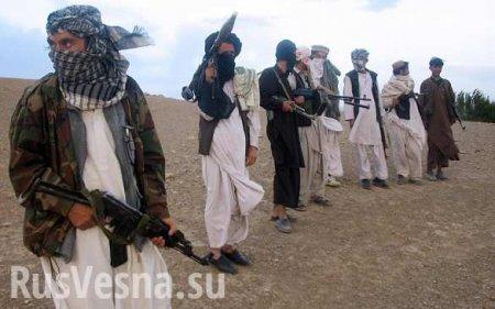 Туркмения помогла Талибану захватить 100подготовленных армией США военных, ...