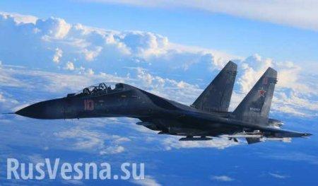 Минобороны показало, как Су-35 охраняли Шойгу над Сирией (ВИДЕО)