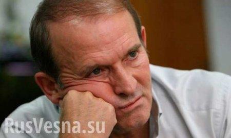 Медведчук призывает Донбасс вернуться в Украину для борьбы против Киева (ВИДЕО)