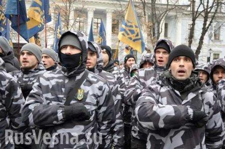 Боевики «Нацкорпуса» воюют в Киеве с многодетными матерями (ФОТО)