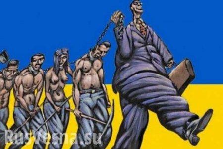 Украина попала в смертельный экономический капкан (ВИДЕО)