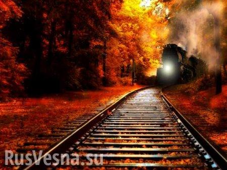 Порошенко запустил «поезд для орков» перед выборами (ФОТО)