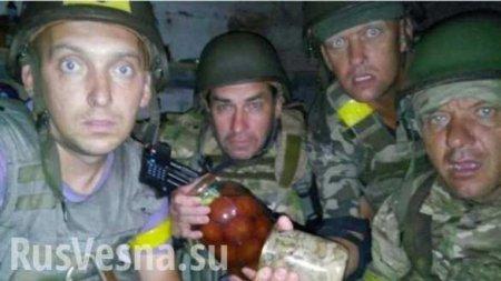 «ВСУшники»-наркоманы убивают друг друга на Донбассе: сводка с линии фронта