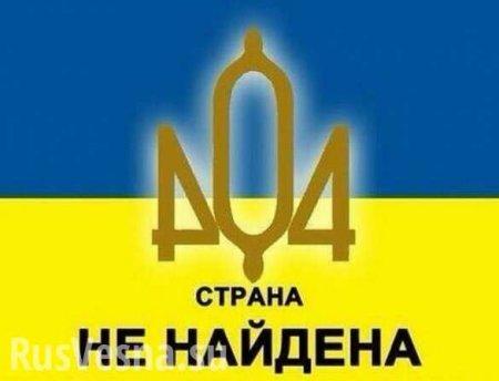 «Украины — нет!» — знаменитый европейский доброволец