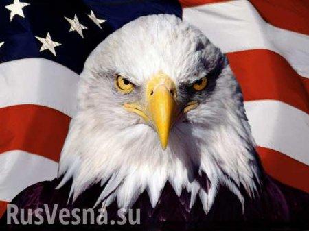 Об Сирию обломали зубы: Как США «устанавливают демократию» в захваченных странах (ВИДЕО)