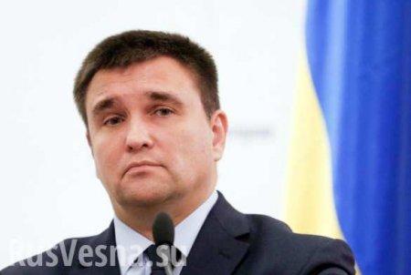 В правительстве высмеяли заявление Климкина после поражения Украины в ВТО