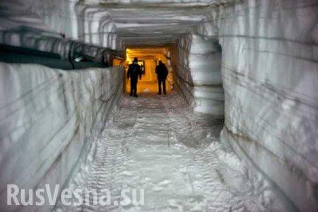 Секретная база США «Ледяной червь» убивает экосистему Арктики (ФОТО)