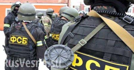 ВМоскве ФСБ задержала Пирожка из«Правого сектора»