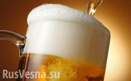 Минимальную цену на пиво могут установить на уровне 75 рублей
