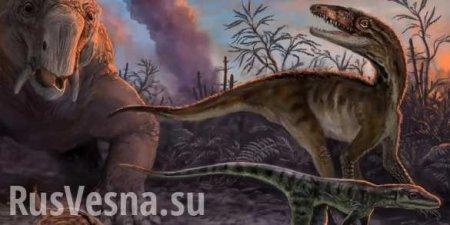 Названа причина самого массового вымирания наЗемле