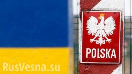 Польская весна: Варшава активно готовится оторвать Львовщину от Украины, — Михальчишин (ВИДЕО)