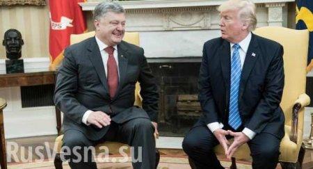 «В Белом доме ждут Зеленского на встречу, а Порошенко — на допрос»: Как в США раскручивается «Украинагейт»