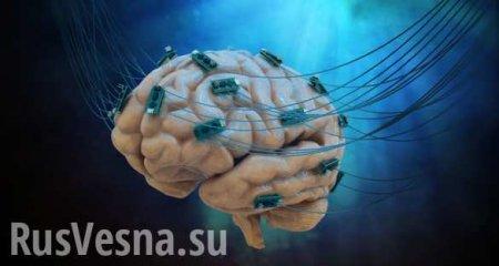 Каксохранить мозг ясным досамой старости ичемвредно вегетарианство (ВИДЕО)