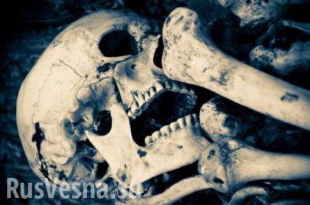 ЭтоУкраина: человеческие кости найдены вклумбе вцентре Днепропетровска ( ...