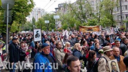 В Киеве задержана организатор «Бессмертного полка» (ФОТО)