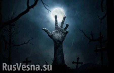 ВСШАразрешили использовать умерших вкачестве удобрения