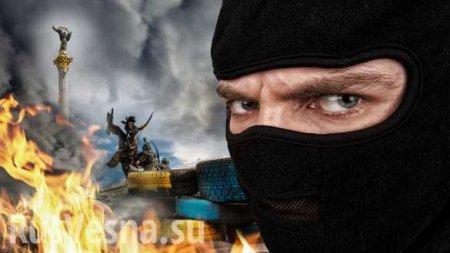 Комиксы проукраинский Майдан поступили в продажу во Франции (ФОТО)