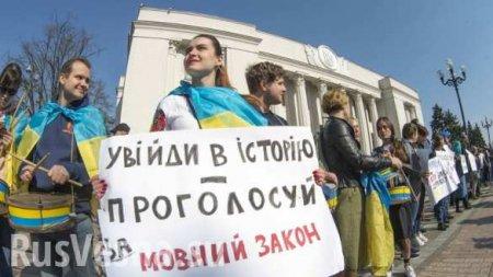 «Превращаться вцирк небудем»: киевский ВУЗ награни закрытия из-за закона омове