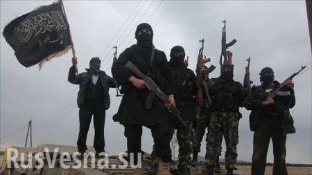 Сирия: Боевики готовят наступление, сосредотачивая большие силы вИдлибе и горах Латакии