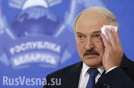 «Гейские игры»: Лукашенко втягивают в новый скандал (ФОТО, ВИДЕО)