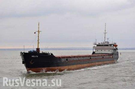 Российский сухогруз из-за шторма вошёл в территориальные воды Украины