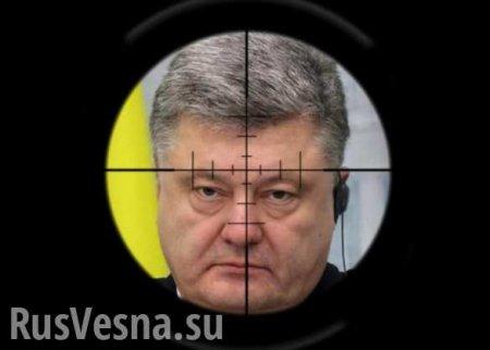 На Украину вернулся охотник на Порошенко (ВИДЕО)