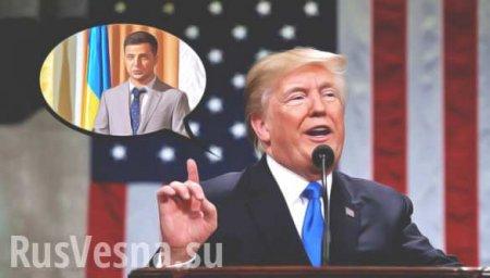 Трамп бросает Зеленского на растерзание Путину