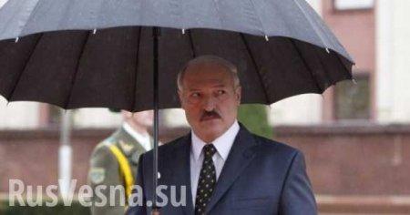Лукашенко предложил разогнать белорусских синоптиков (ВИДЕО)